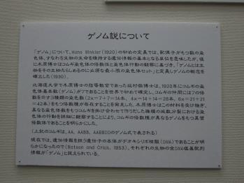 kihara_0011.jpg