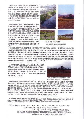 medakamai_0002.jpg