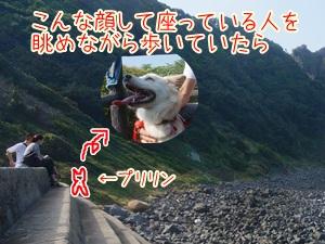 20130927_15.jpg