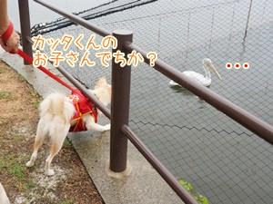 20131003_2.jpg