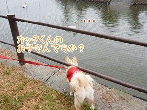20131003_3.jpg
