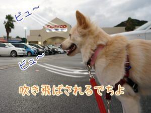 20131010_9.jpg