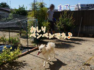 20131013_10.jpg