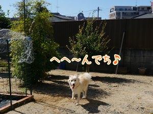20131013_9.jpg