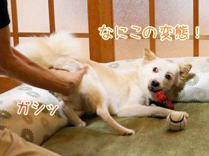 20131019_5.jpg