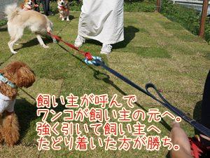 20131021_12_1.jpg