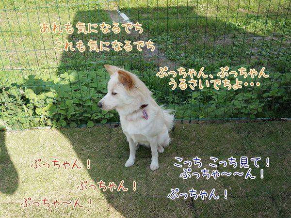 20131022_4.jpg