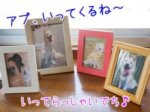 20131024_4.jpg