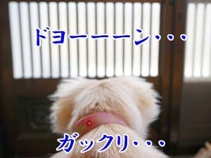 20131024_8.jpg