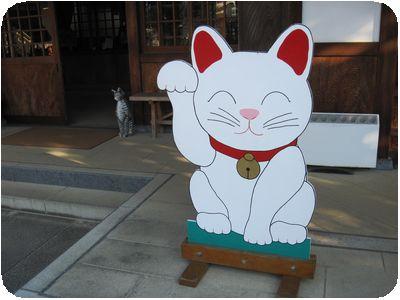 猫の看板と置物
