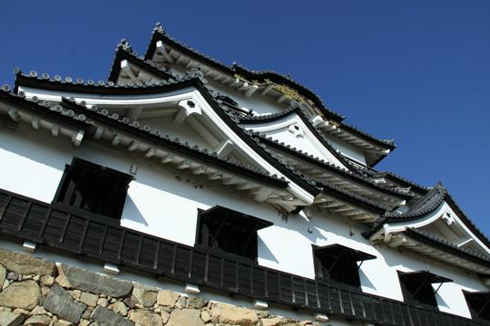20090906_hikone_castle-62.jpg