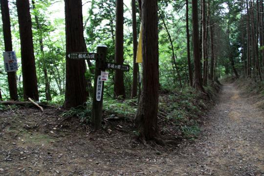 20090921_sekigahara-55.jpg