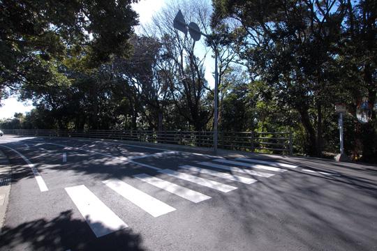 20110108_cape_shiono-07.jpg