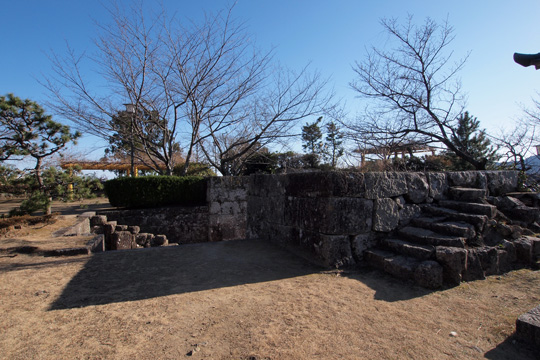 20110108_shingu_castle-23.jpg