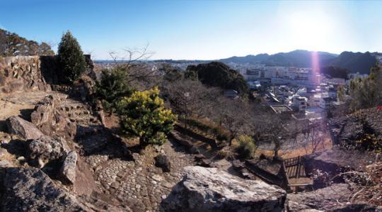 20110108_shingu_castle-31.jpg