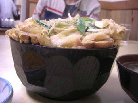 fyjisyokudou (2)