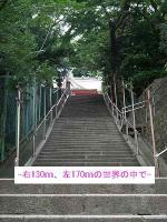22wakami-ya02