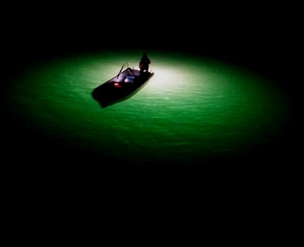 シラス漁19