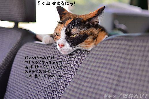 110710_5001.jpg