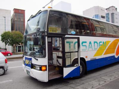 Kochi201202-105.JPG