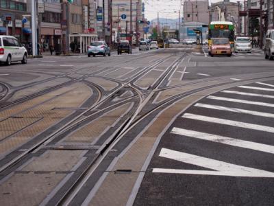 Kochi201202-110.JPG