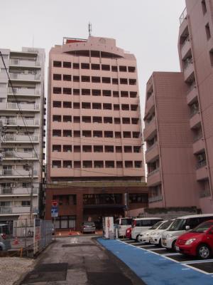 Kochi201202-216.JPG