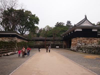 Kochi201202-301.JPG