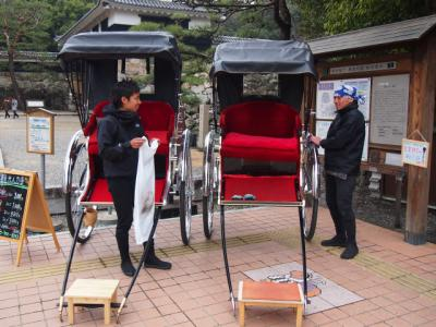 Kochi201202-302.JPG