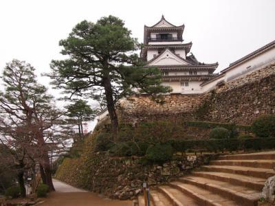 Kochi201202-307.JPG
