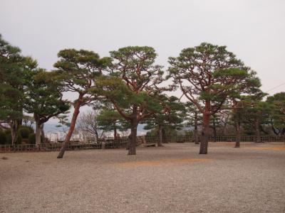 Kochi201202-308.JPG