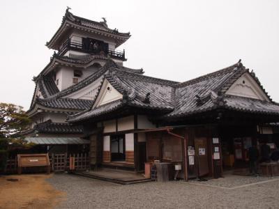 Kochi201202-309.JPG