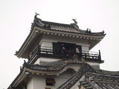 Kochi201202-310.JPG