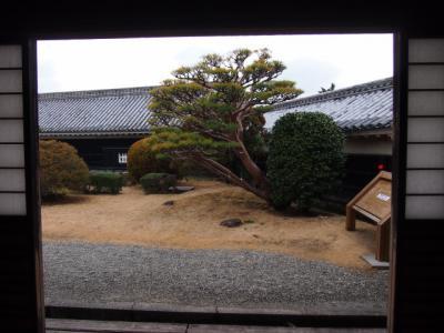 Kochi201202-313.JPG