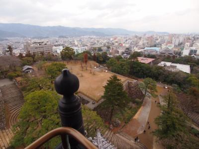 Kochi201202-319.JPG