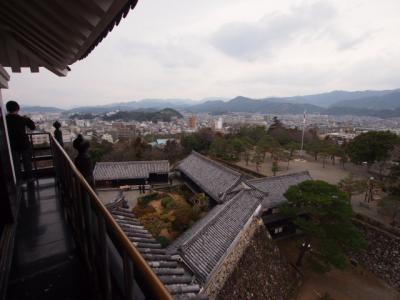 Kochi201202-320.JPG