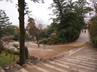Kochi201202-323.JPG