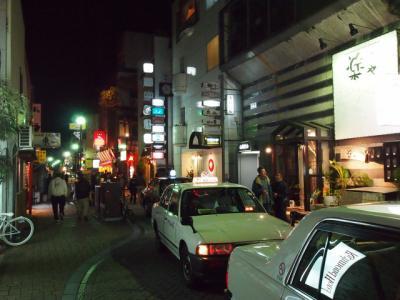 Kochi201202-508.JPG