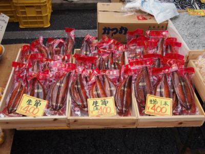 Kochi201202-609.JPG