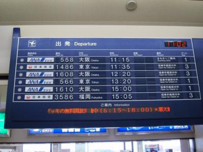 Kochi201202-619.JPG