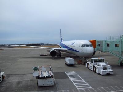 Kochi201202-620.JPG