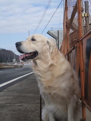 2010_0214散歩0002