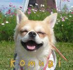 komugiオカン