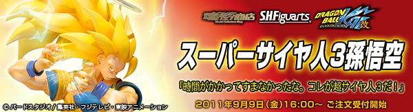 bnr_ss3goku_02_fix.jpg
