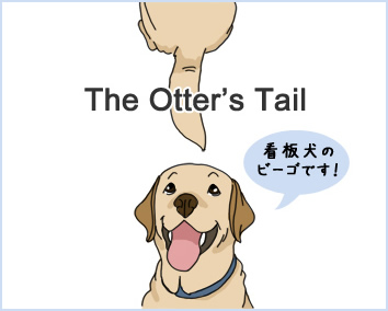 TheOtter'sTail