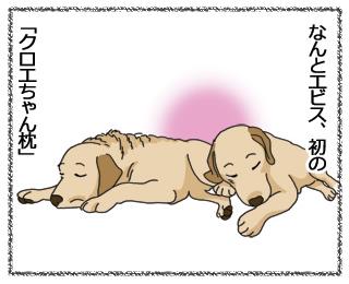 羊の国のラブラドール絵日記「記念日」5
