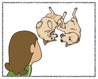 羊の国のラブラドール絵日記12月24日イブ3