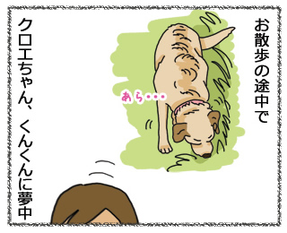 羊の国のラブラドール絵日記1月28日1