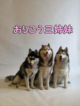 美人三姉妹