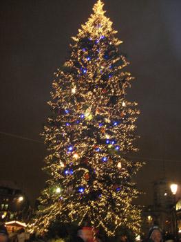 クレベール広場のクリスマスツリー