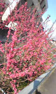 CAQUYG46.jpg